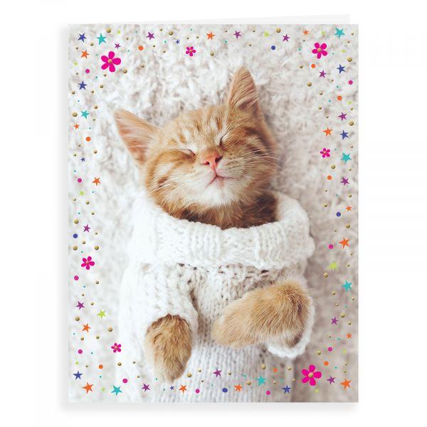 Blank Card, Kitten Sleeping